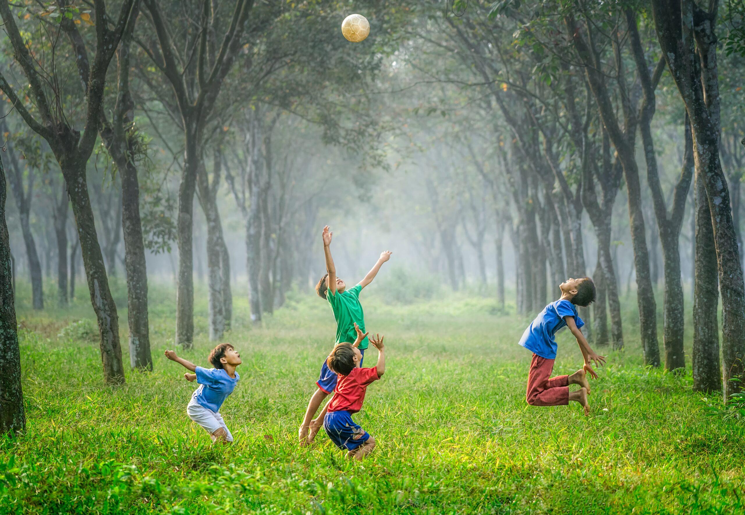 Spielende Kinder auf Wiese